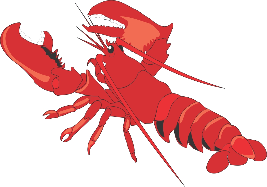 lobster-clipart-images-free